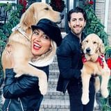 Sweet Photos of Ramen and Pinot, Kaitlyn Bristowe and Jason Tartick's Golden Retrievers