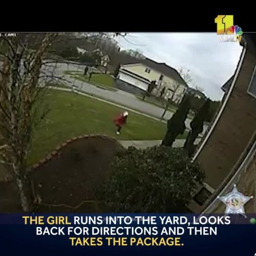 Pint-sized porch pirate caught on camera swiping package