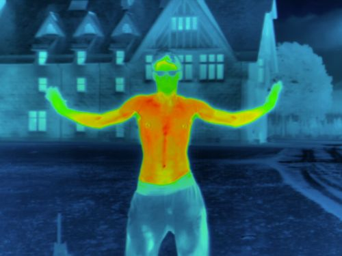 A woman discovered she had breast cancer after a tourist attraction's thermal camera revealed a 'hot spot'