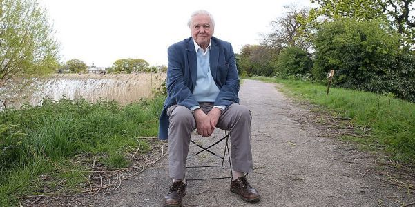 David Attenborough predicts the 'collapse of our civilizations,' if climate change continues to be ignored
