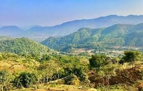 Araku forests to remain open for tourists at night shortly