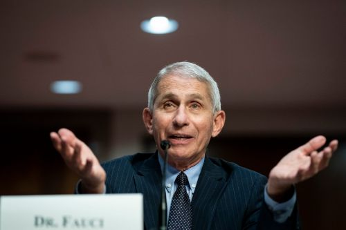 Fauci said he wanted to go on Rachel Maddow's MSNBC show for 'months' but was 'blocked' under Trump administration