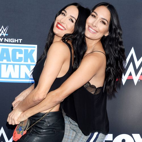 Nikki and Brie Bella Tease Coming Out of Retirement on 'Total Divas': 'I Always Wanted the Tag Titles'