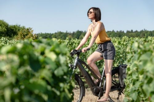 See Champagne Differently with Leblanq's New Cycling Tour