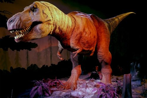 Research Reveals That 2.5 Billion T. Rexes Once Inhabited Earth