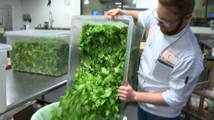 Romaine Recall Leaves Mpls. Nonprofit Looking For Nutritious Replacement
