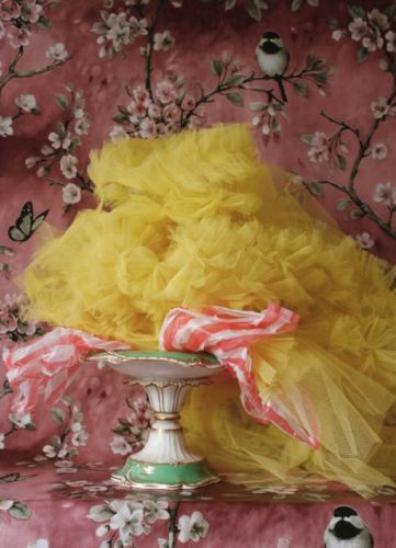 'Dress Portrait' muses on Molly Goddard with dreamy still lifes