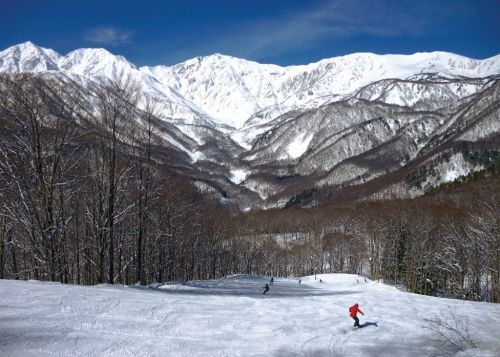 Ask the Advisors: What's the Next Great Ski Destination?