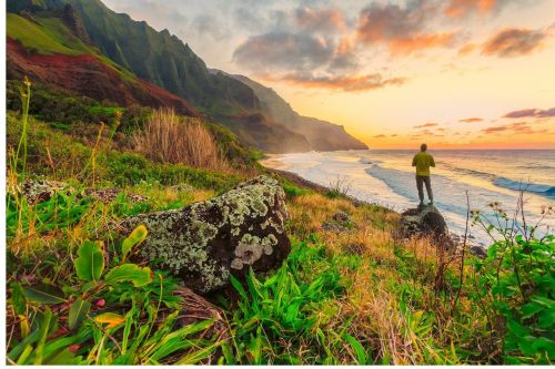Planning Your Hawaii Vacation: Which Island Is Right For You?
