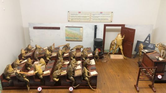 Welcome To Froggyland, The Croatian Taxidermy Museum That May Soon Come To The U.S