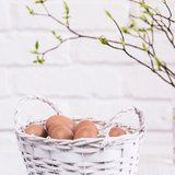 8 Things to Do With Eggs - Besides Eat Them