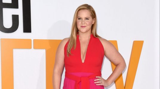Amy Schumer Reflects On A Pregnancy For Her 'Trainwreck' Character And The World Calls For A Sequel
