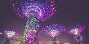 14 per cent growth in Indian travellers to Singapore