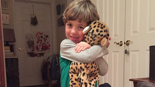 Boy loses toy cheetah along interstate, asks Rhode Island State Police for help