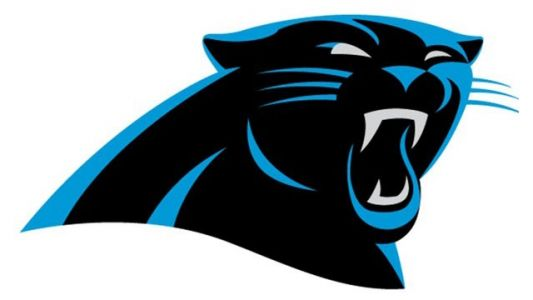 Carolina Panthers owner being investigated, news release says