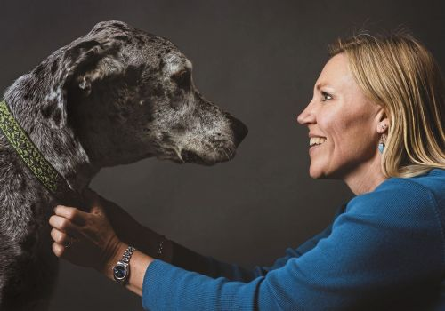 Pet Tales: Dog aging study may help them and people live longer