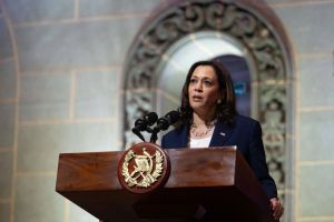 'Do Not Come': Kamala Harris Hit On Both Sides After Deterring Potential Migrants From Crossing Southern Border