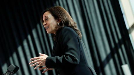 White House 'perplexed' by Kamala Harris' first foreign trip riddled with disasters - media