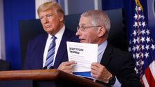 Trump Still Pushing Malaria Drug As Fauci Says No 'Strong' Evidence It Treats Coronavirus
