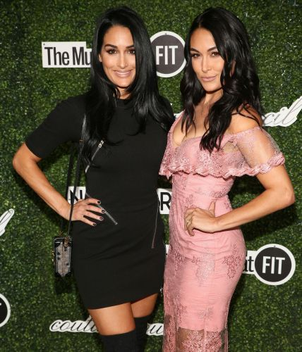 Congrats! Nikki Bella and Brie Bella Are Both Pregnant: 'It Was a Total Surprise'
