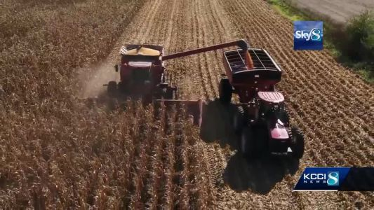 Survey: Rural economy being hurt by tariffs, low prices
