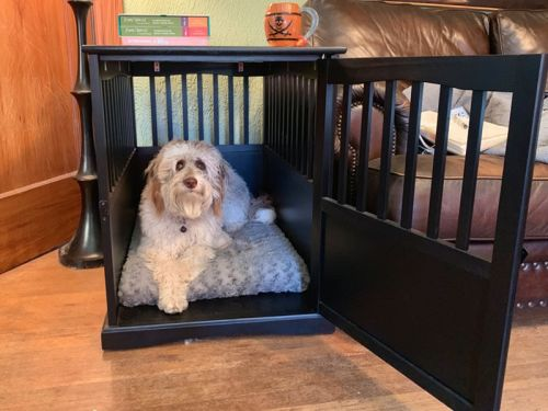 This dog crate doubles as an end table - most of my guests don't even realize what it is