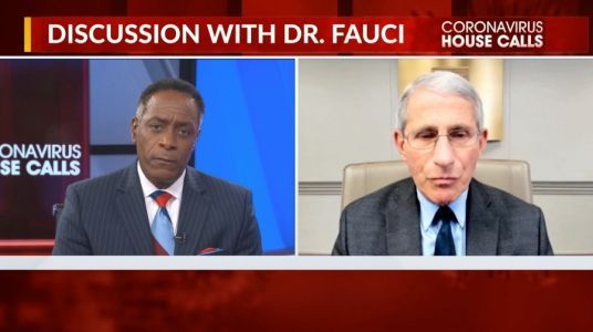 Fauci warns COVID-19 will not be eradicated, 'new normal' to stick around