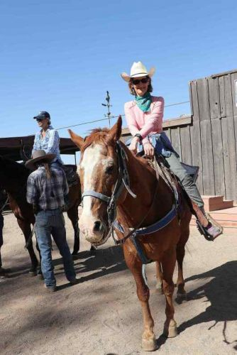 Rookie in the Saddle Overcoming My Horse Riding Fear