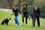 Barack and Michelle Obama's Beloved Dog Bo Has Died After a Battle With Cancer