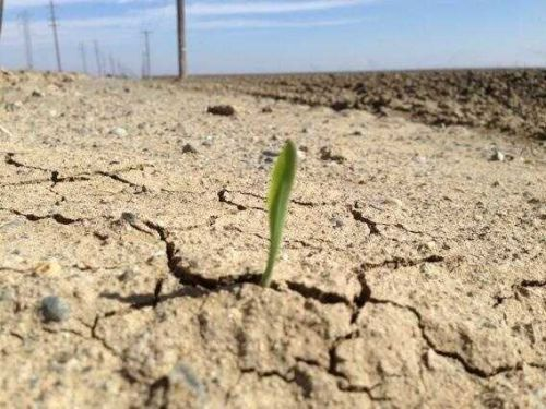 The West is the driest it's ben in 1,200 years - raising questions about a livable future