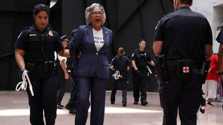 Congressional Black Caucus chair ARRESTED by Capitol Police in protest photo-op over voting rights