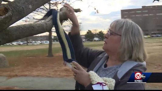 'Secret Santa Scarf Lady' spreads warmth in KC