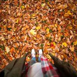 This Leaf-Clearing Hack Will Make You Throw Out Your Rakes -For Good