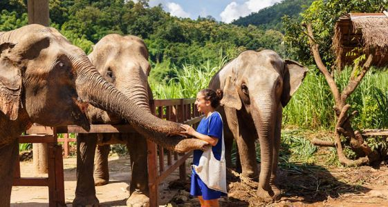 6 Reasons to Put Chiang Mai, Thailand, on Your Travel List