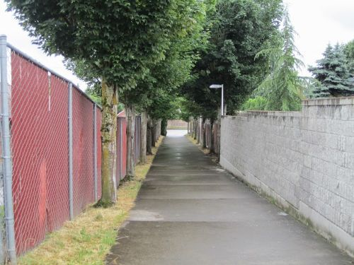Is it the Pathway or is it the Urban Fabric?