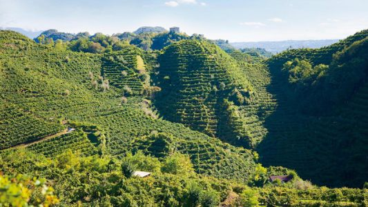 A Three-Day Trek Along Prosecco Road Is Italy's Bubbliest, Best-Kept Secret