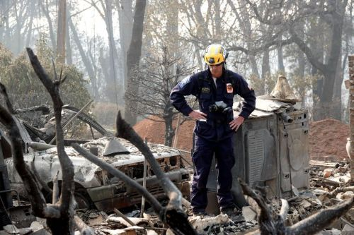 'We need hundreds': Fire victims' families urged to give DNA