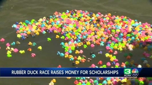 1,000 rubber ducks used in race to raise money for scholarships