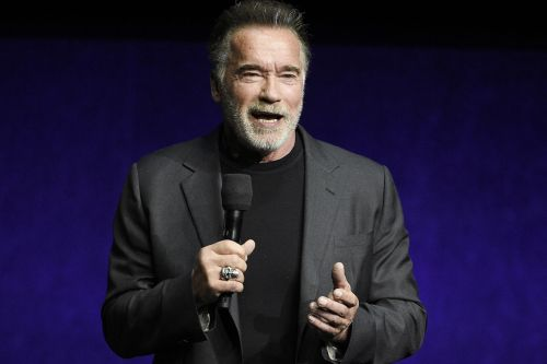 Schwarzenegger assaulted in South Africa