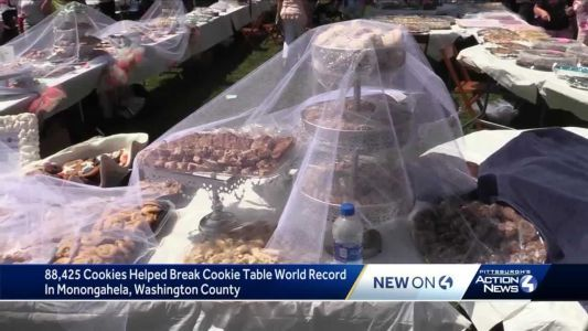 88,425 cookies helped local cookie table break world record
