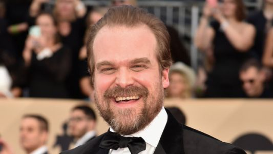 David Harbour Asked Twitter For A Huge 'Happy Feet'-Style Favor, And It Delivered