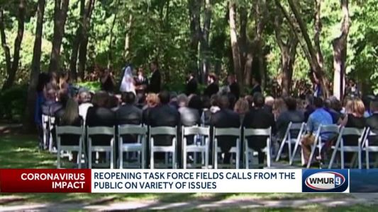 Callers to reopening task force raise questions about pools, wedding venues