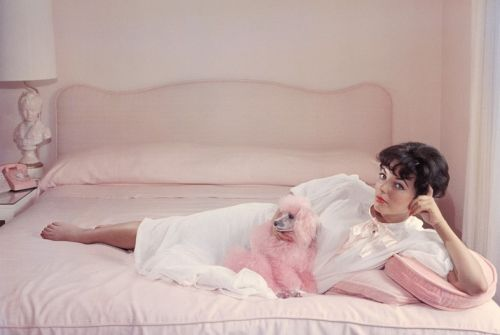 Eight Famous People and the Dogs They Adored