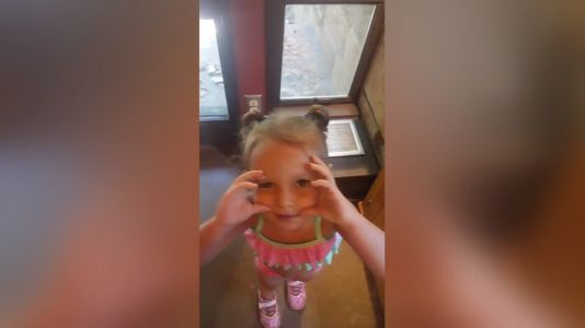 3-year-old girl attacked, killed by dog family owned just 5 days