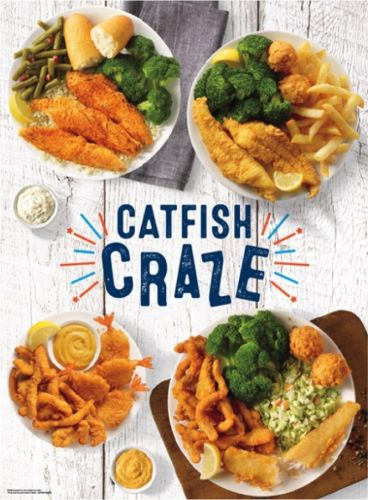 Catfish Craze comes to Captain D's restaurants today providing a delicious, craveable variety of Catfish meals