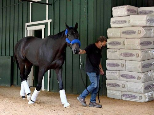 Meds given to Medina Spirit contain steroid that caused failed drug test, Baffert says