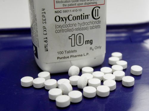 A member of the rich family behind OxyContin was granted a patent for addiction treatment