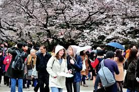 To boost Japan tourist market, new appointment was initiated