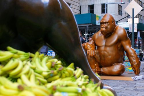 7-foot tall Harambe statue installed opposite of Charging Bull covered in bananas
