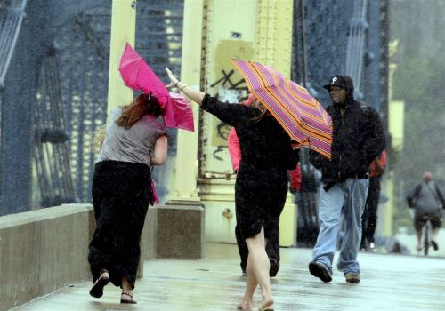 Wind storm could bring gusts up to 60 mph Sunday